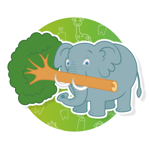 Immagine elefante